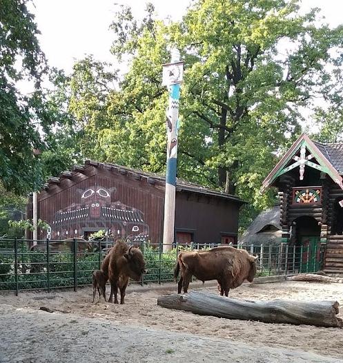 berlin-zoo-iv-8.1.2019.jpg