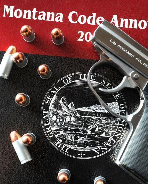 Montana SC gun Decision I 10.22.2019