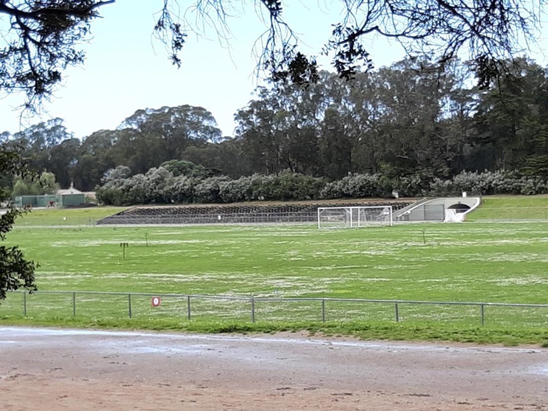 Quiet Polo Field 2020.jpg