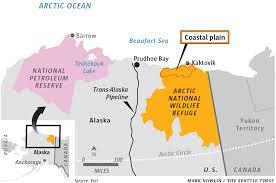 alaska wildlife refuge IV 8.17.2020.jpg