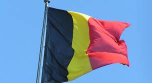 Belgian Foreign Minister II 10.22.2020.jpg