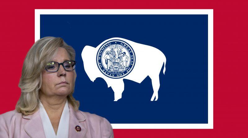 Liz Cheney II 5.11.2021.jpg