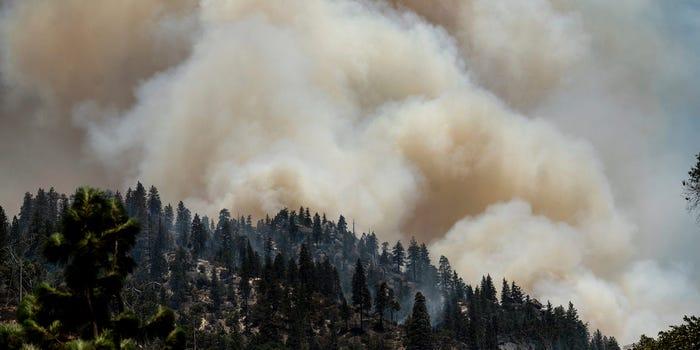 Montana burning III 7.23.2021.jpg