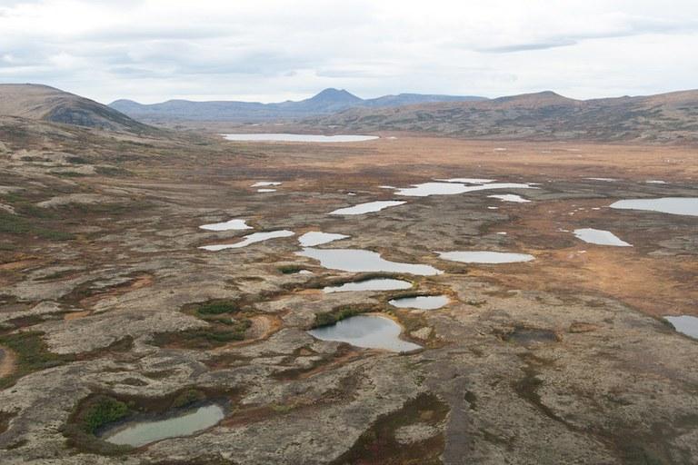 alaska wildlife refuge VII 9.9.2021.jpg